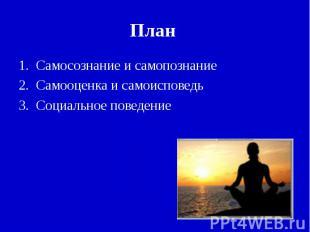 Самосознание и самопознаниеСамооценка и самоисповедьСоциальное поведение