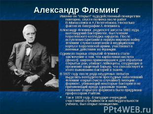 """Александр Флеминг Именно он """"открыл"""" чудодейственный пенициллин повторно, спустя"""