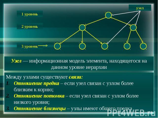 Узел — информационная модель элемента, находящегося на данном уровне иерархии Между узлами существуют связи:Отношение предка – если узел связан с узлом более близким к корню;Отношение потомка – если узел связан с узлом более низкого уровня;Отношение…