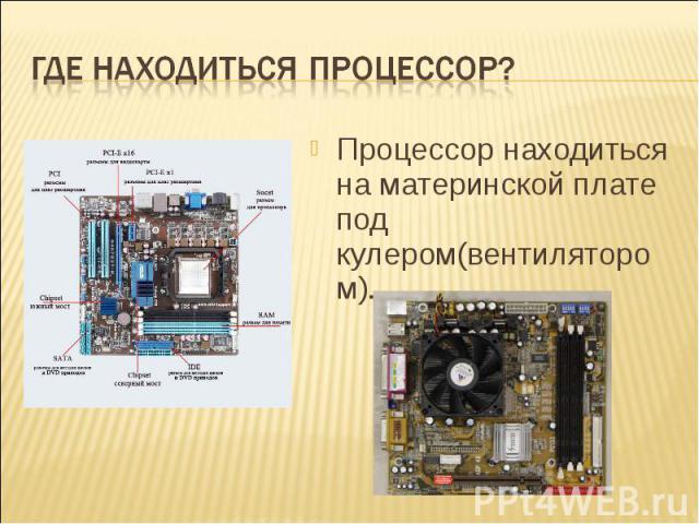 Где находиться процессор? Процессор находиться на материнской плате под кулером(вентилятором).