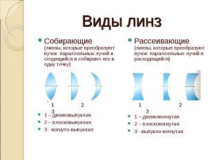 Виды линз Собирающие (линзы, которые преобразуют пучок параллельных лучей в сход