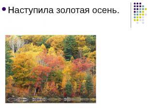 Наступила золотая осень.