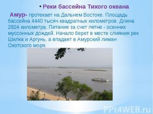 Реки бассейна Тихого океана Амур- протекает на Дальнем Востоке. Площадь бассейна