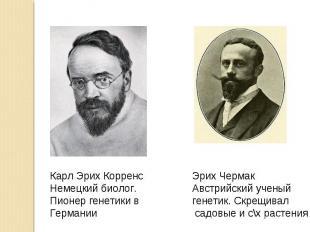 Карл Эрих КорренсНемецкий биолог.Пионер генетики вГермании Эрих ЧермакАвстрийски