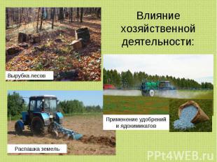 Влияние хозяйственной деятельности: Вырубка лесов Применение удобрений и ядохими