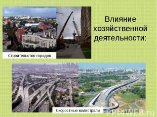 Влияние хозяйственной деятельности: Строительство городов Скоростные магистрали