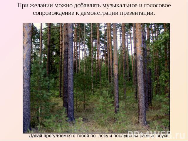 При желании можно добавлять музыкальное и голосовое сопровождение к демонстрации презентации. Давай прогуляемся с тобой по лесу и послушаем разные звуки.