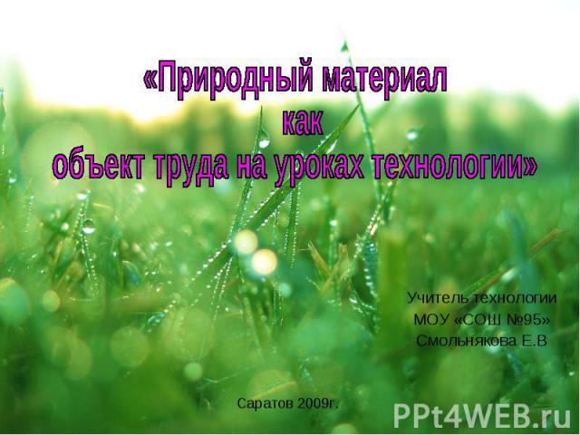 Учитель технологииМОУ «СОШ №95»Смольнякова Е.ВПриродный материал как объект труда на уроках технологии