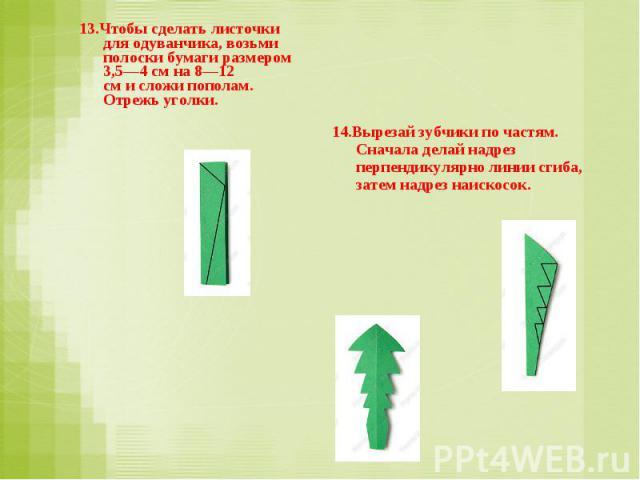 13.Чтобы сделать листочки для одуванчика, возьми полоски бумаги размером 3,5—4 смна8—12 смисложи пополам. Отрежь уголки. 14.Вырезай зубчики почастям. Сначала делай надрез перпендикулярно линии сгиба, затем надрез наискосок.