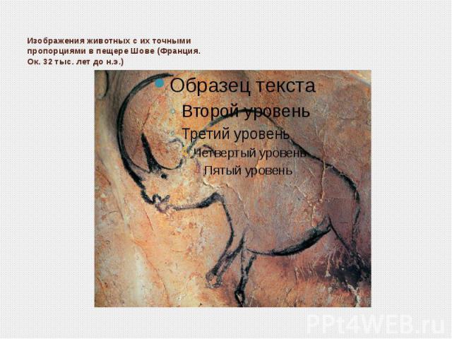 Изображения животных с их точными пропорциями в пещере Шове (Франция. Ок. 32 тыс. лет до н.э.)
