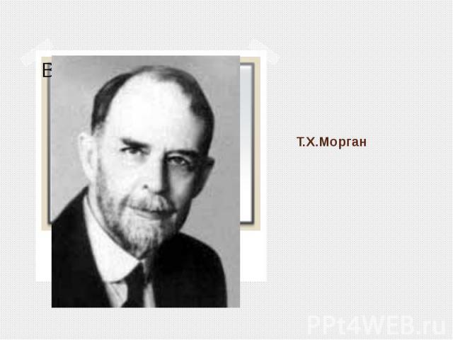 Т.Х.Морган