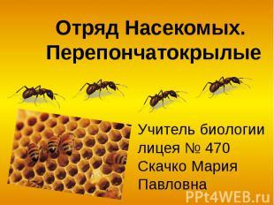 Отряд Насекомых. Перепончатокрылые Учитель биологии лицея № 470 Скачко Мария Пав