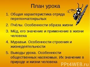 План урока Общая характеристика отряда перепончатокрылых Пчёлы. Особенности обра