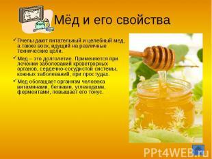 Мёд и его свойства Пчелы дают питательный и целебный мед, а также воск, идущий н