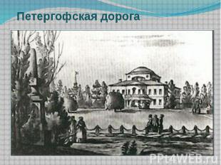 Петергофская дорога
