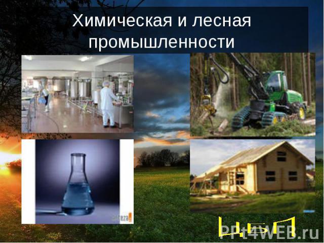 Химическая и лесная промышленности