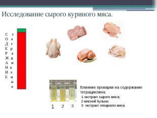 Исследование сырого куриного мяса. Влияние проварки на содержание тетрациклина: