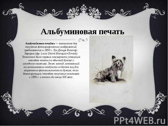 Альбуминовая печать Альбуминовая печать— технология для получения фотографических изображений, предложенная в1850г. Луи Дезире Бланкар-Эвраром (фр.Louis Désiré Blanquart-Evrard). Технология была первым коммерчески успешным методом печати на обыч…