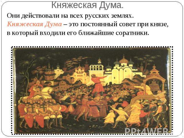 Княжеская Дума. Они действовали на всех русских землях.Княжеская Дума – это постоянный совет при князе, в который входили его ближайшие соратники.