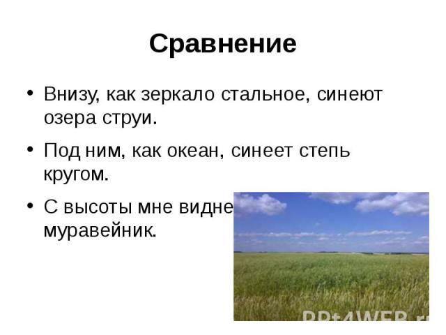 СравнениеВнизу, как зеркало стальное, синеют озера струи.Под ним, как океан, синеет степь кругом.С высоты мне виднелась Москва, что муравейник.