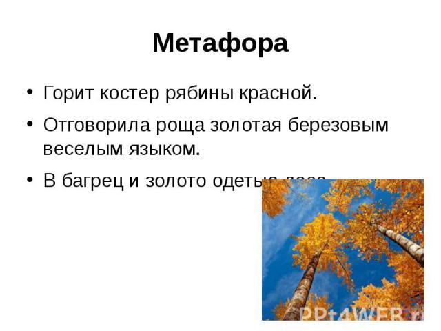 МетафораГорит костер рябины красной.Отговорила роща золотая березовым веселым языком.В багрец и золото одетые леса.