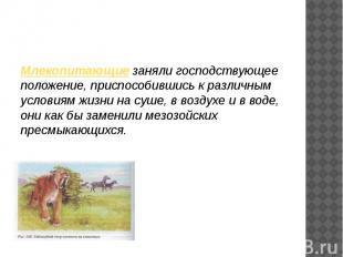 Млекопитающие заняли господствующее положение, приспособившись к различным услов