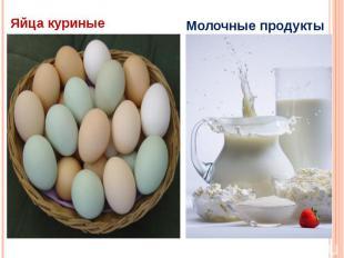 Яйца куриные Молочные продукты