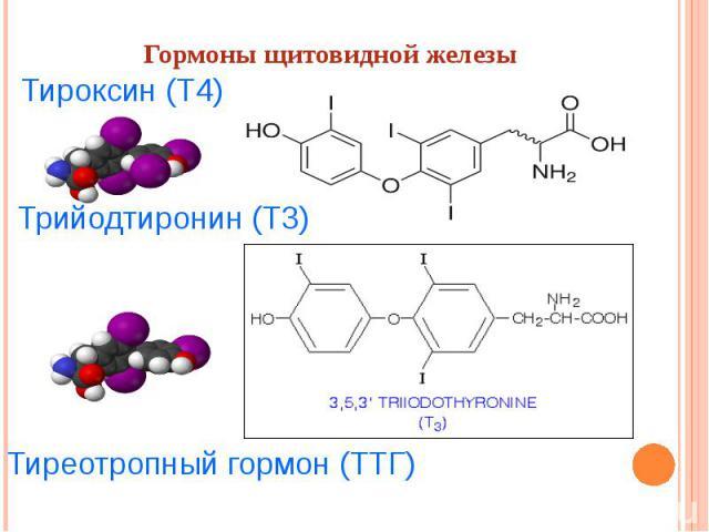 Гормоны щитовидной железы Тироксин(Т4) Трийодтиронин(Т3) Тиреотропный гормон (ТТГ)