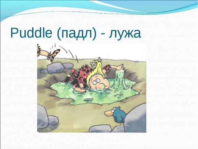 Puddle (падл) - лужа