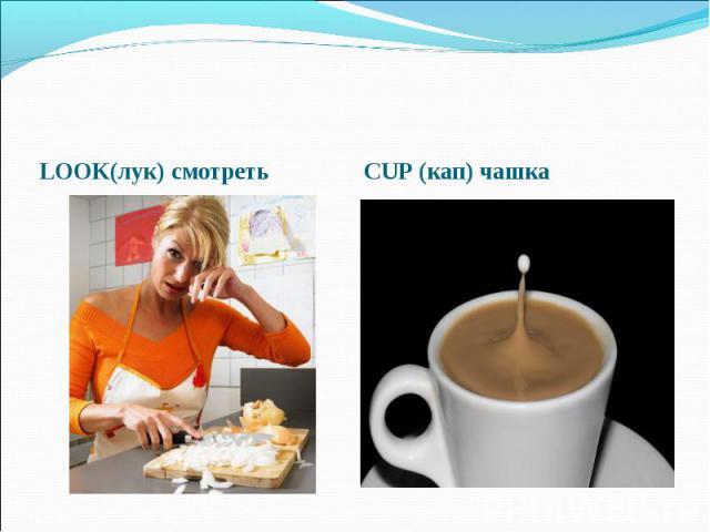 LOOK(лук) смотреть CUP (кап) чашка