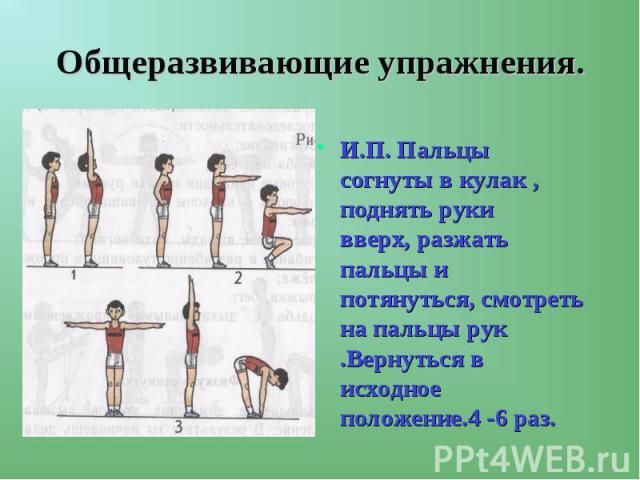 Общеразвивающие упражнения. И.П. Пальцы согнуты в кулак , поднять руки вверх, разжать пальцы и потянуться, смотреть на пальцы рук .Вернуться в исходное положение.4 -6 раз.