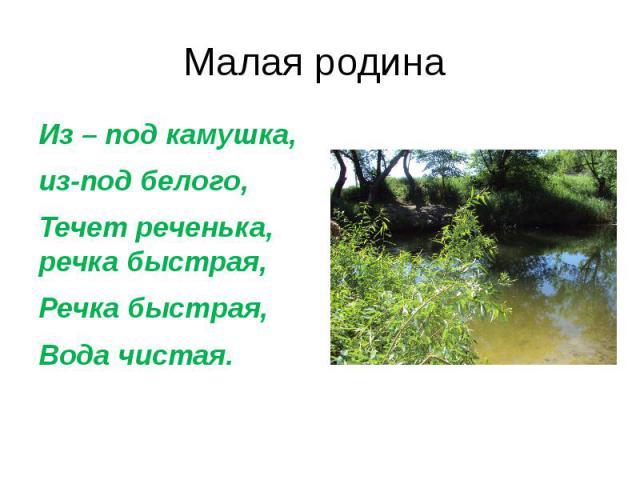 Малая родина Из – под камушка, из-под белого,Течет реченька, речка быстрая,Речка быстрая, Вода чистая.