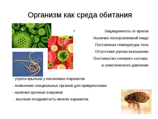 Организм как среда обитания Защищенность от враговНаличие легкоусвояемой пищиПостоянная температура телаОтсутствие угрозы высыханияПостоянство солевого состава и осмотического давления - утрата крыльев у насекомых-паразитов - появление специальных о…