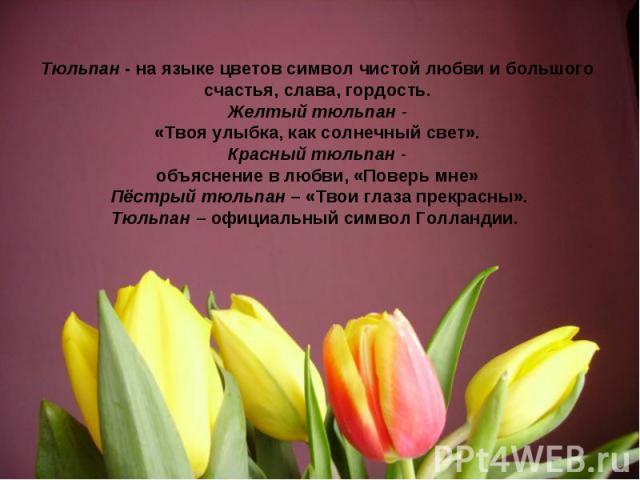Тюльпан - на языке цветов символ чистой любви и большого счастья, слава, гордость.Желтый тюльпан -«Твоя улыбка, как солнечный свет».Красный тюльпан -объяснение в любви, «Поверь мне» Пёстрый тюльпан – «Твои глаза прекрасны».Тюльпан – официальный симв…
