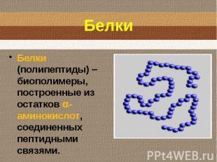 Белки (полипептиды) биополимеры, построенные из остатков -аминокислот, соединенн