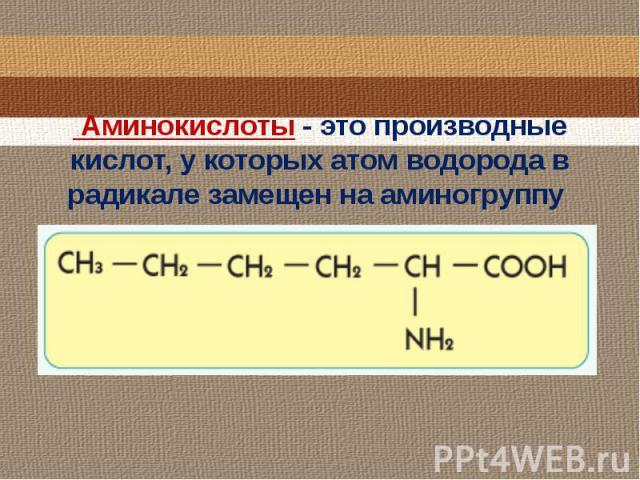 Аминокислоты - это производные кислот, у которых атом водорода в радикале замещен на аминогруппу
