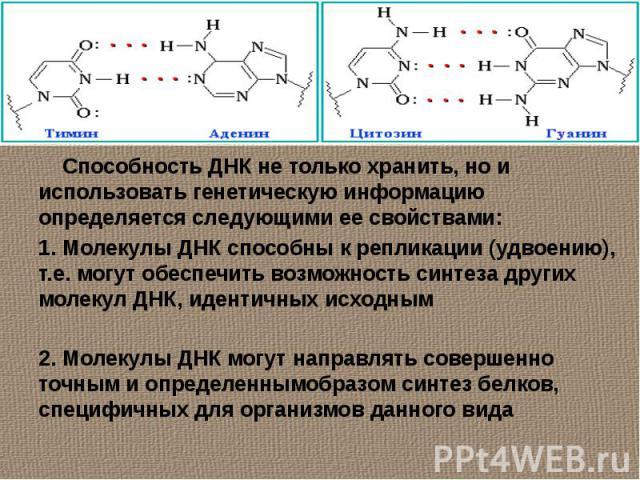 Способность ДНК не только хранить, но и использовать генетическую информацию определяется следующими ее свойствами:1. Молекулы ДНК способны к репликации (удвоению), т.е. могут обеспечить возможность синтеза других молекул ДНК, идентичных исходным 2.…