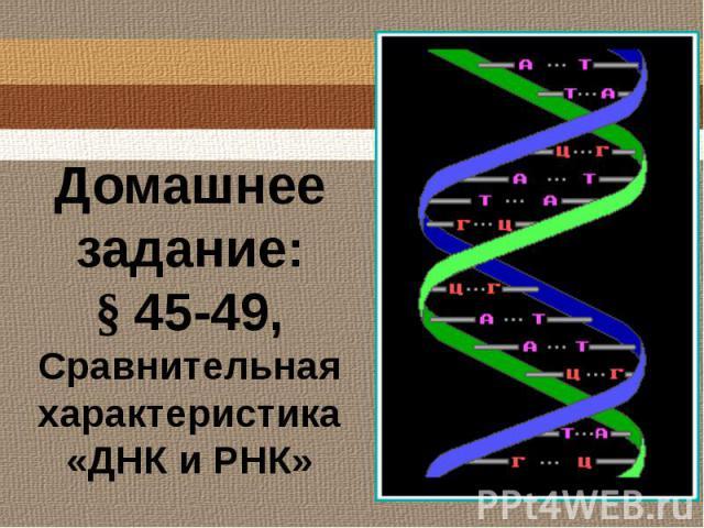 Домашнее задание:§ 45-49, Сравнительная характеристика «ДНК и РНК»
