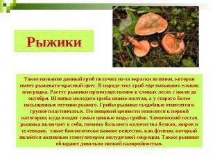 Рыжики Такое название данный гриб получил из-за окраски шляпки, которая имеет ры