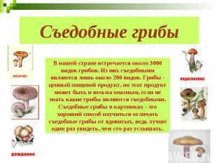 Съедобные грибы В нашей стране встречается около 3000 видов грибов. Из них съедо