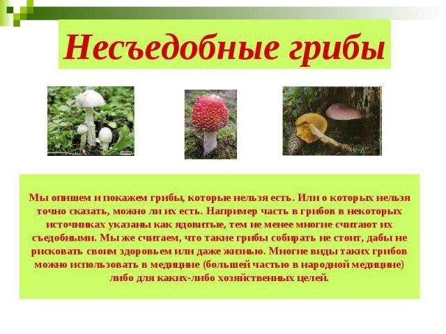 Несъедобные грибы Мы опишем и покажем грибы, которые нельзя есть. Или о которых нельзя точно сказать, можно ли их есть. Например часть в грибов в некоторых источниках указаны как ядовитые, тем не менее многие считают их съедобными. Мы же считаем, чт…