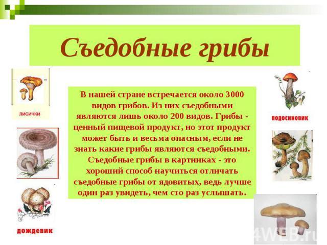 Съедобные грибы В нашей стране встречается около 3000 видов грибов. Из них съедобными являются лишь около 200 видов. Грибы - ценный пищевой продукт, но этот продукт может быть и весьма опасным, если не знать какие грибы являются съедобными. Съедобны…
