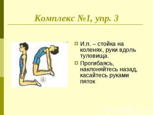 Комплекс №1, упр. 3 И.п. – стойка на коленях, руки вдоль туловища.Прогибаясь, на
