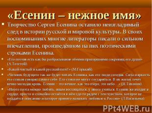 «Есенин – нежное имя» Творчество Сергея Есенина оставило неизгладимый след в ист
