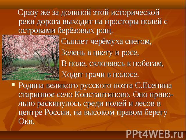 Сразу же за долиной этой исторической реки дорога выходит на просторы полей с островами берёзовых рощ. Сыплет черёмуха снегом, Зелень в цвету и росе, В поле, склоняясь к побегам, Ходят грачи в полосе.Родина великого русского поэта С.Есенина старинно…