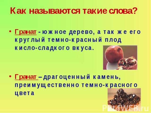 Как называются такие слова? Гранат - южное дерево, а так же его круглый темно-красный плод кисло-сладкого вкуса. Гранат – драгоценный камень, преимущественно темно-красного цвета