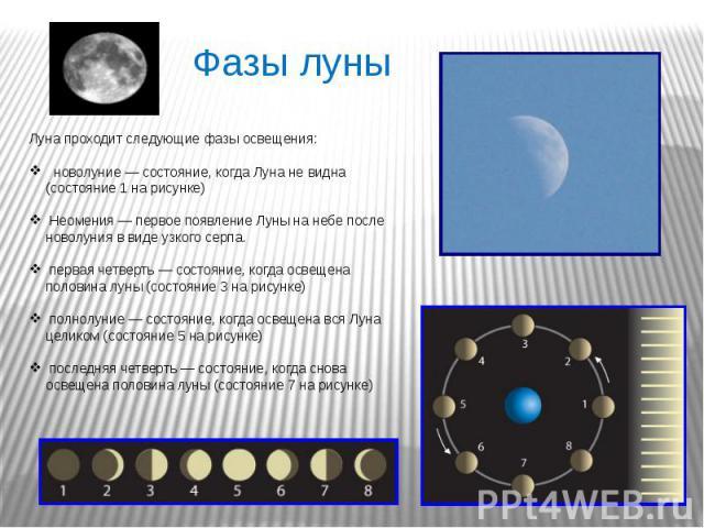 Луна проходит следующие фазы освещения: новолуние— состояние, когда Луна не видна (состояние 1 на рисунке) Неомения— первое появление Луны на небе после новолуния в виде узкого серпа. первая четверть— состояние, когда освещена половина луны (сост…