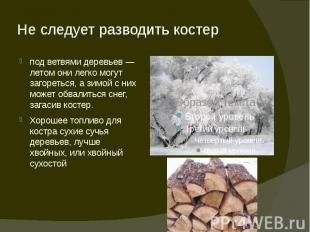 Не следует разводить костер под ветвями деревьев — летом они легко могут загорет