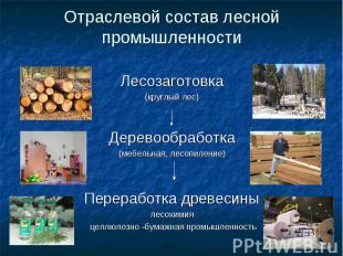 Отраслевой состав лесной промышленности Лесозаготовка(круглый лес)Деревообработк