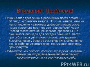 Внимание! Проблема! Общий запас древесины в российских лесах огромен - 80 млрд.